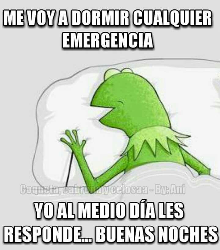 Pin De Maritza Rios En Divertido Humor En Espanol Memes De La Rana Amigos Graciosos