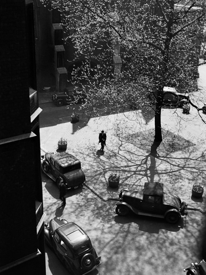 """m3zzaluna: """" elevated view looking down on a courtyard with parked cars and a flowering tree, england, ca. 1950 © John Gay/ english heritage/ arcaid/ corbis """""""