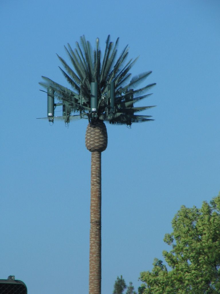 Cell tower tree | Human Impact | Tower, Tower design ...
