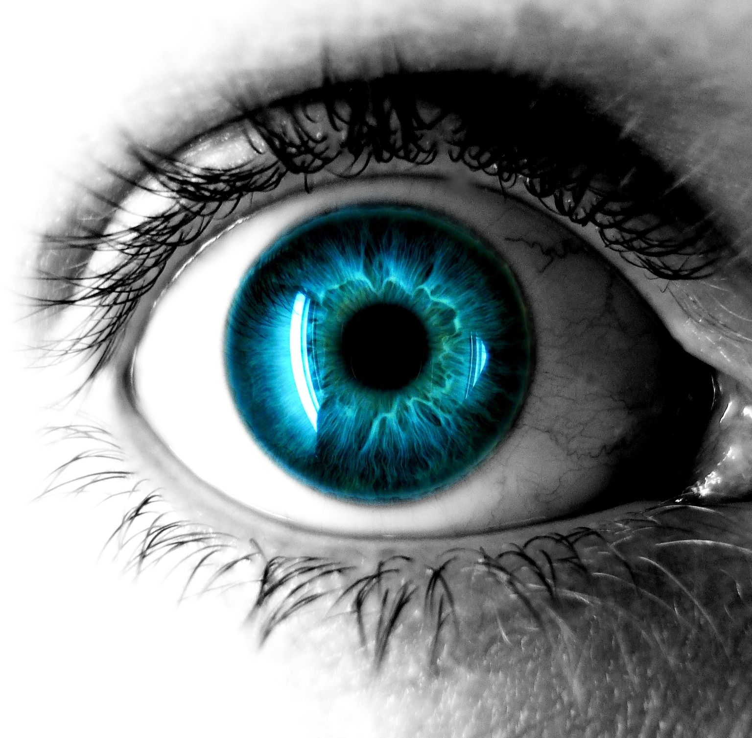 Cool Eyeball Wallpaper HD Download