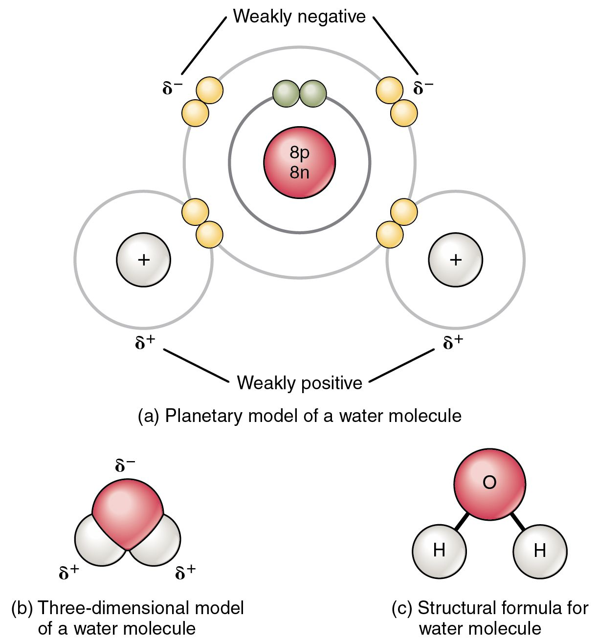 Pin By Galaxy Science On Covalent Bond With Images
