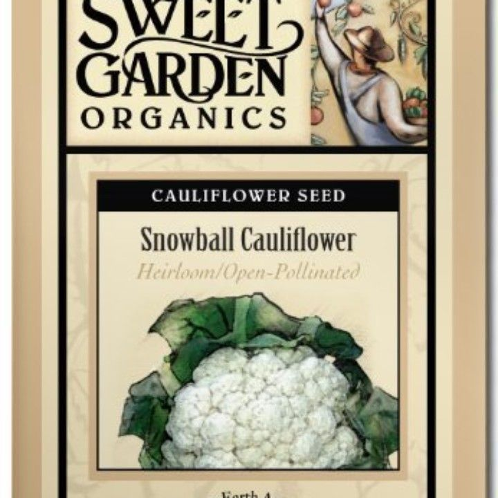 Snowball Cauliflower from The Scribbled Hollow for $2.89 on Square Market