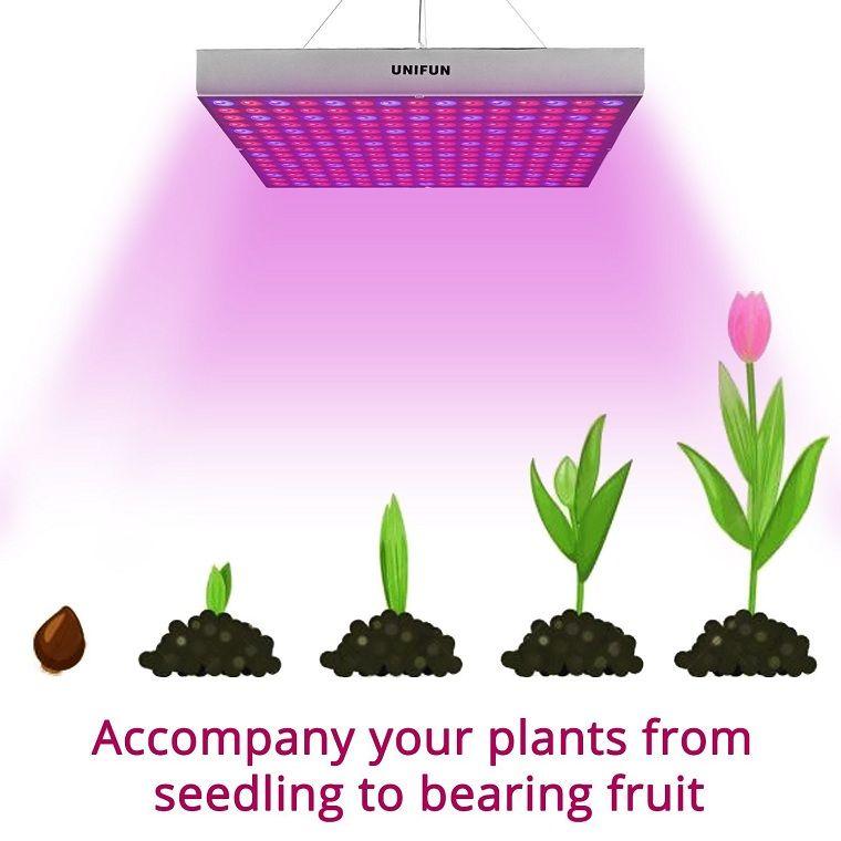 Best Led Grow Lights For Indoor Plants Indoor Grow Lights 400 x 300