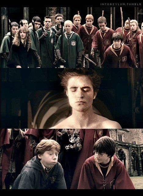 Pin By Hannah English On Harry Potter Harry Potter Vs Twilight Twilight Funny Harry Potter Jokes