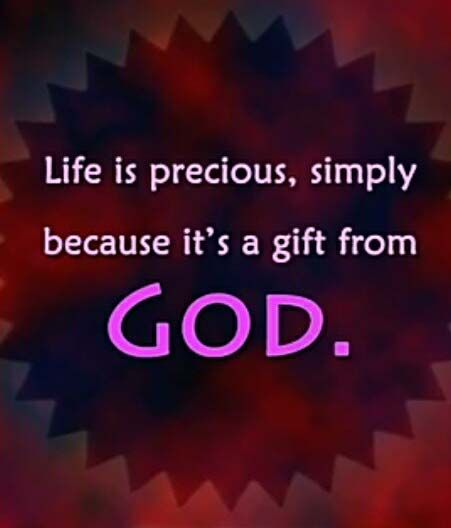 Life Is Precious Simply Because Great Messages Pinterest New Life Is Precious Quotes