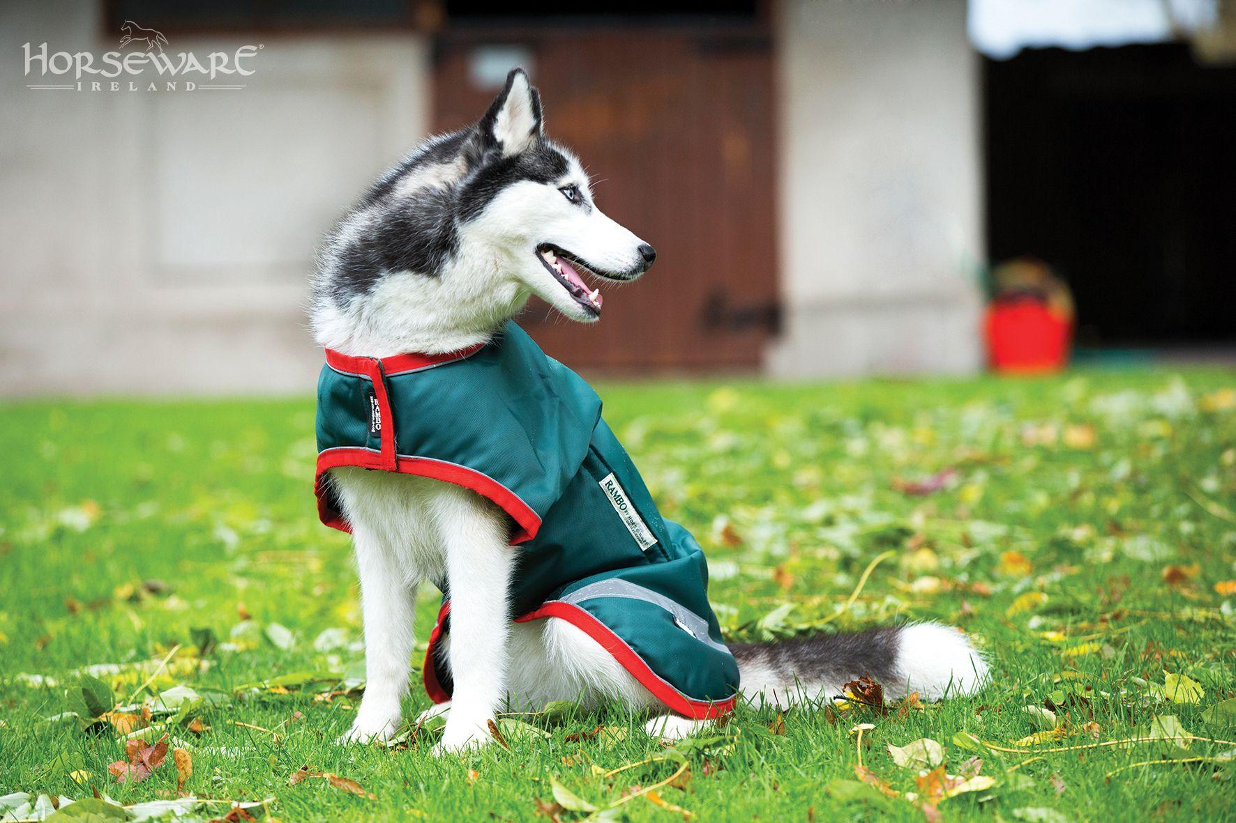 Horseware Rambo Waterproof Dog Rug
