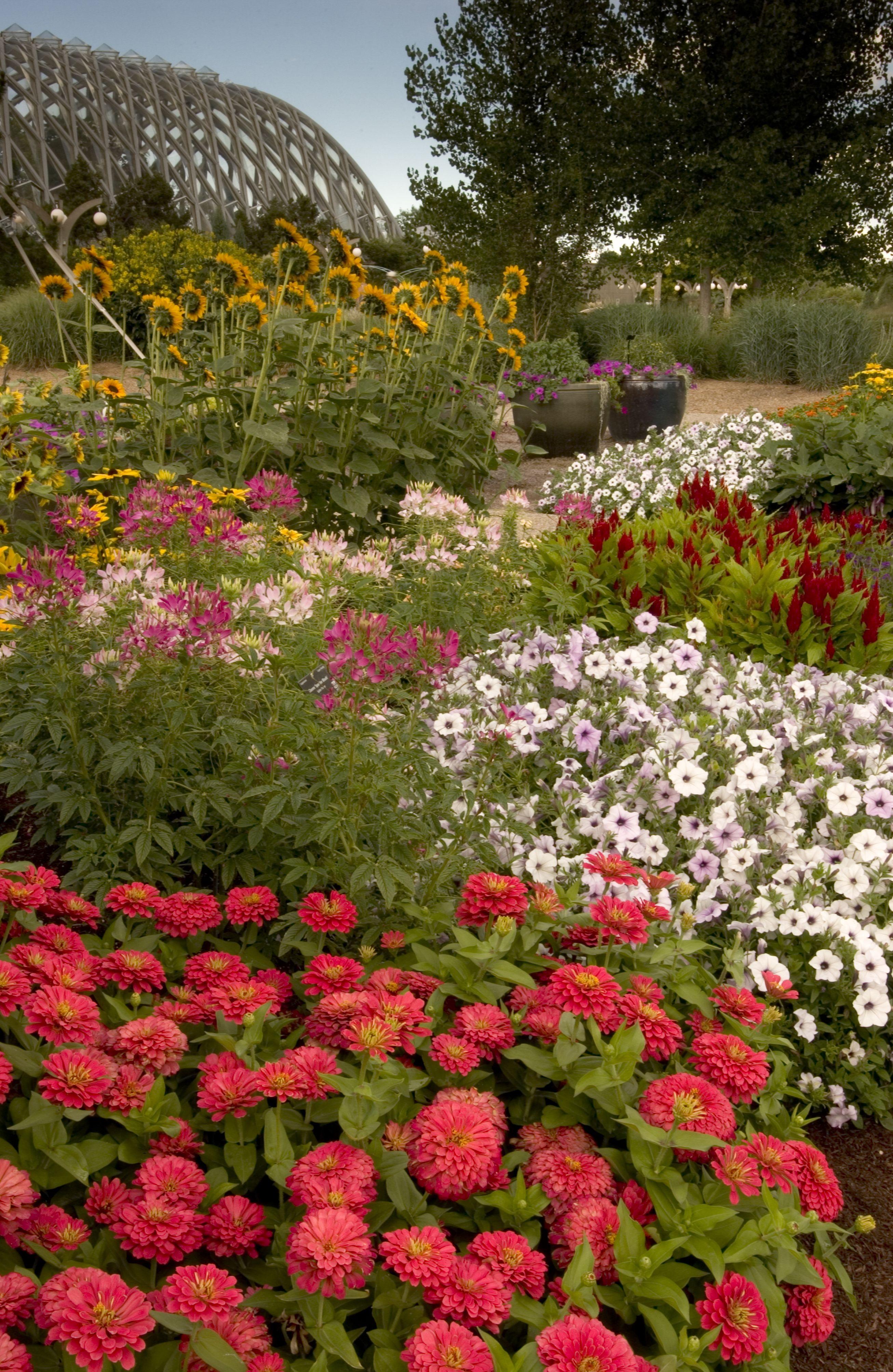 eb69976ef9f1bab2bd3eb39dcc2de2a8 - Denver Botanic Gardens Free Days Denver