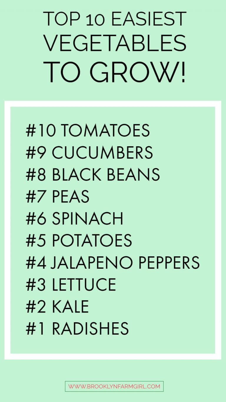 10 Easiest Vegetables To Grow Grow In Containers From Seed