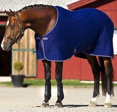 Amigo Jersey Cooler Pony Rug Atlantic