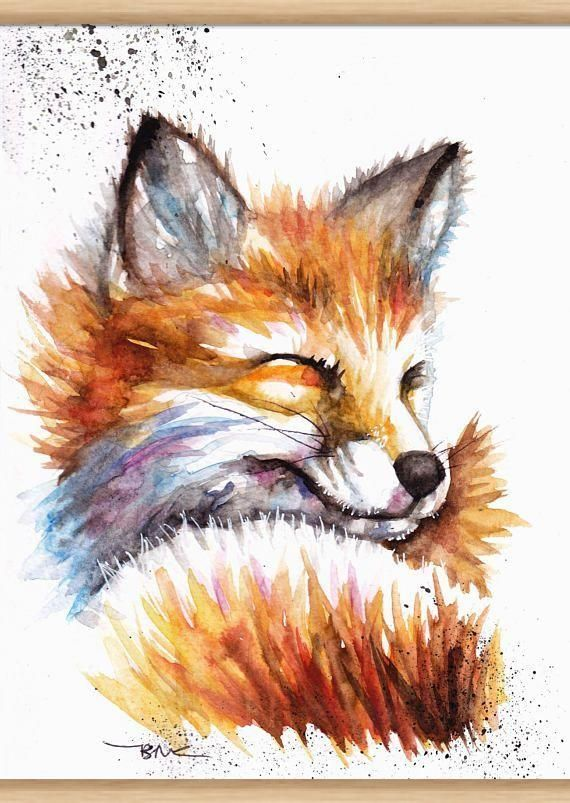 Epingle Par Cusimano Sur Aquar Animaux Aquarelle De Renard