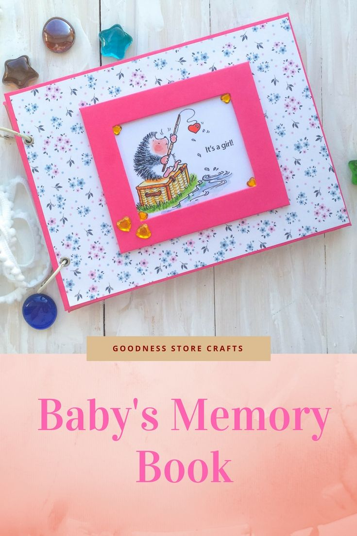 Wonderful Baby Shower Record Book Part - 14: Hedgehog Baby Girl Photo Album Personalized Newborn Memory Book Keepsake  First Year Journal Record Notebook Baby Shower Gift New Mom Gift | Gift  Ideas On ...