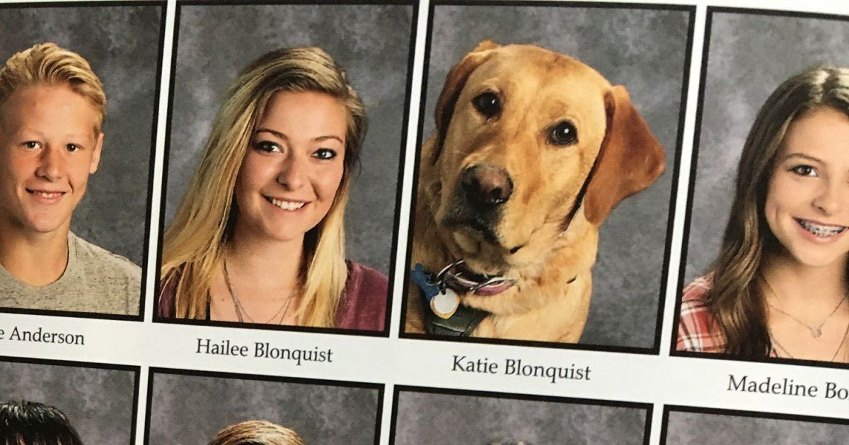 Service Dog Gets Picture In Yearbook