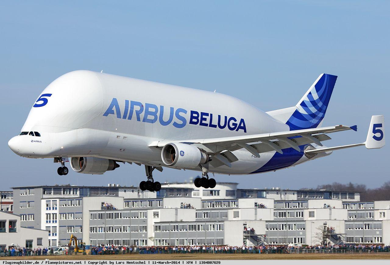 Photo Airbus Transport International Airbus A300f4 608st Beluga F