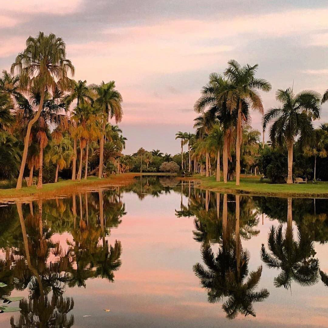 Miami views so nice you see them twice! by @fairchildgarden #Miami ...