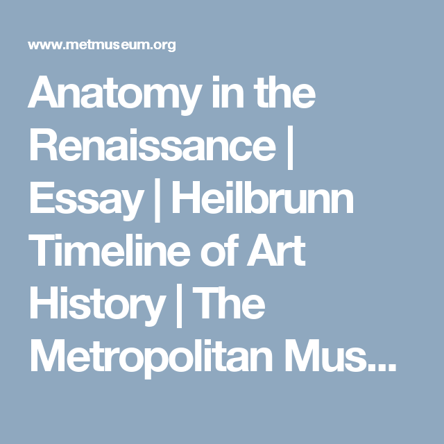Anatomy In The Renaissance  Art  Pinterest  Art History Art And  Anatomy In The Renaissance  Essay  Heilbrunn Timeline Of Art History   The Metropolitan Museum Of Art Essay For High School Application also Buying Assistant Cover Letter  Do My Assighment
