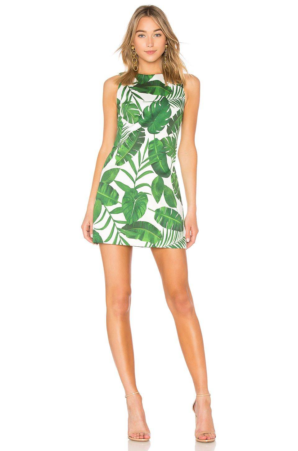 4c8cadbf764b Alice + Olivia Coley Crew Dress in Tropical Leaves | clothes ...