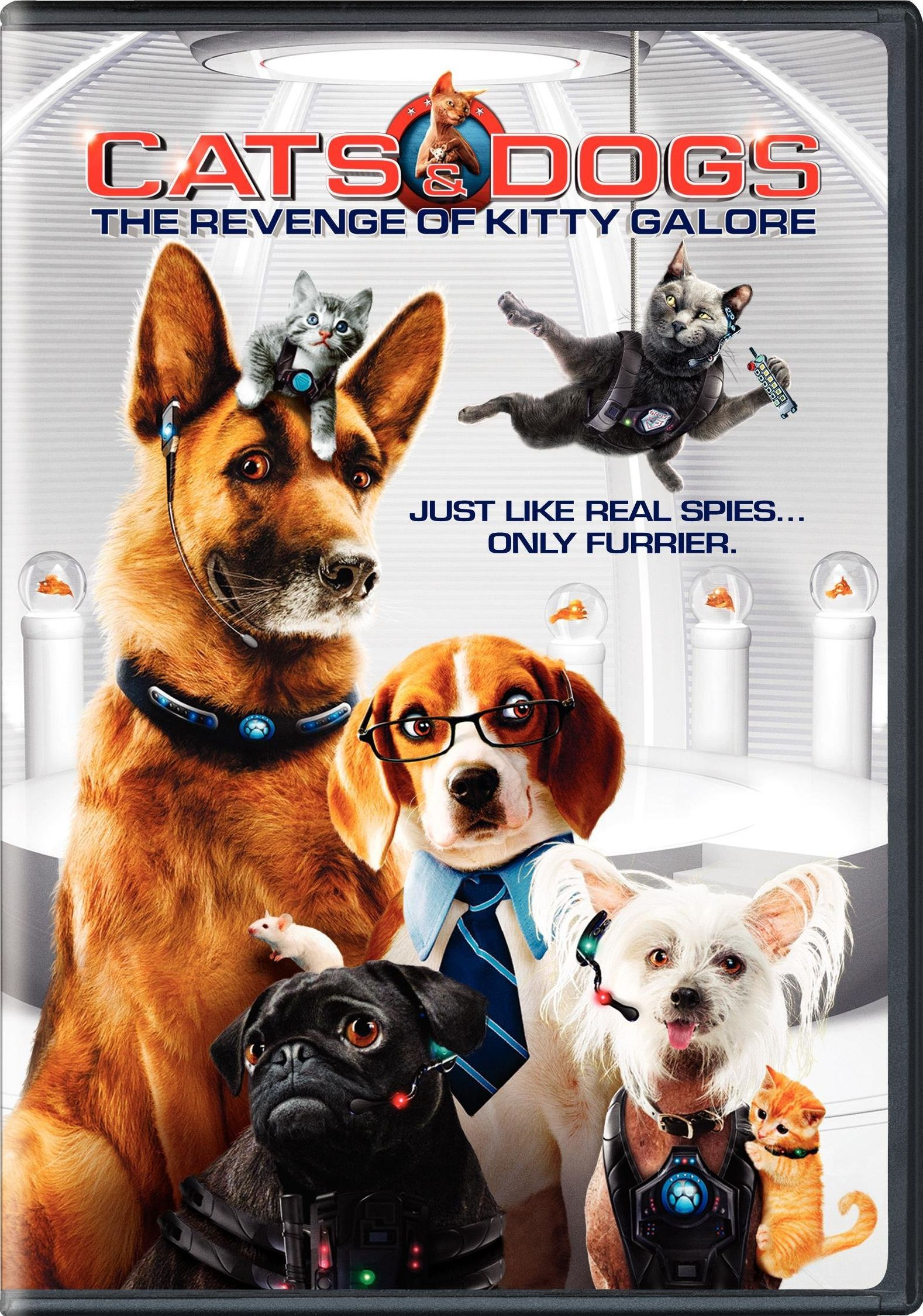 Read This Article To Get Answers To Your Questions About Dogs Dog Movies Dog Cat Dogs