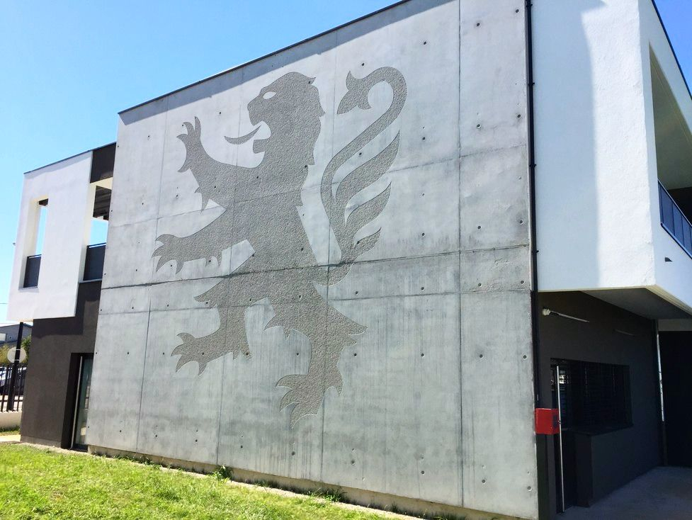 Le #lion de lu0027Olympique Lyonnais (#OL) en #béton bouchardé - maison en beton coule