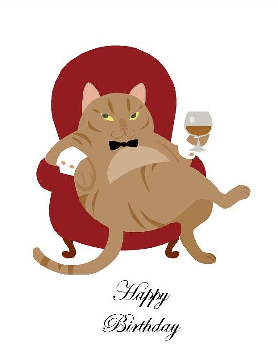 Happy Birthday You Weird Cat Lover Funny Snarky Humorous Card