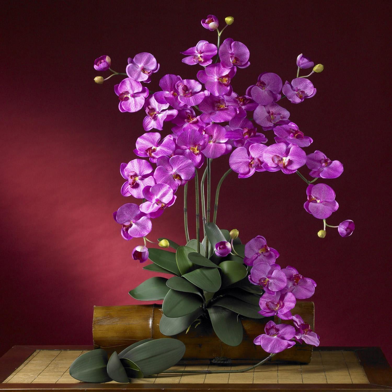 Phalaenopsis silk orchid flower w leaves 6 stems products phalaenopsis silk orchid flower w leaves 6 stems dhlflorist Gallery