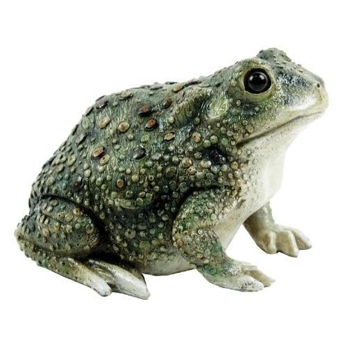 Outdoor Toad Statue Garden Frog Figurine Pond Lawn Reptile Lifelike Yard  Patio