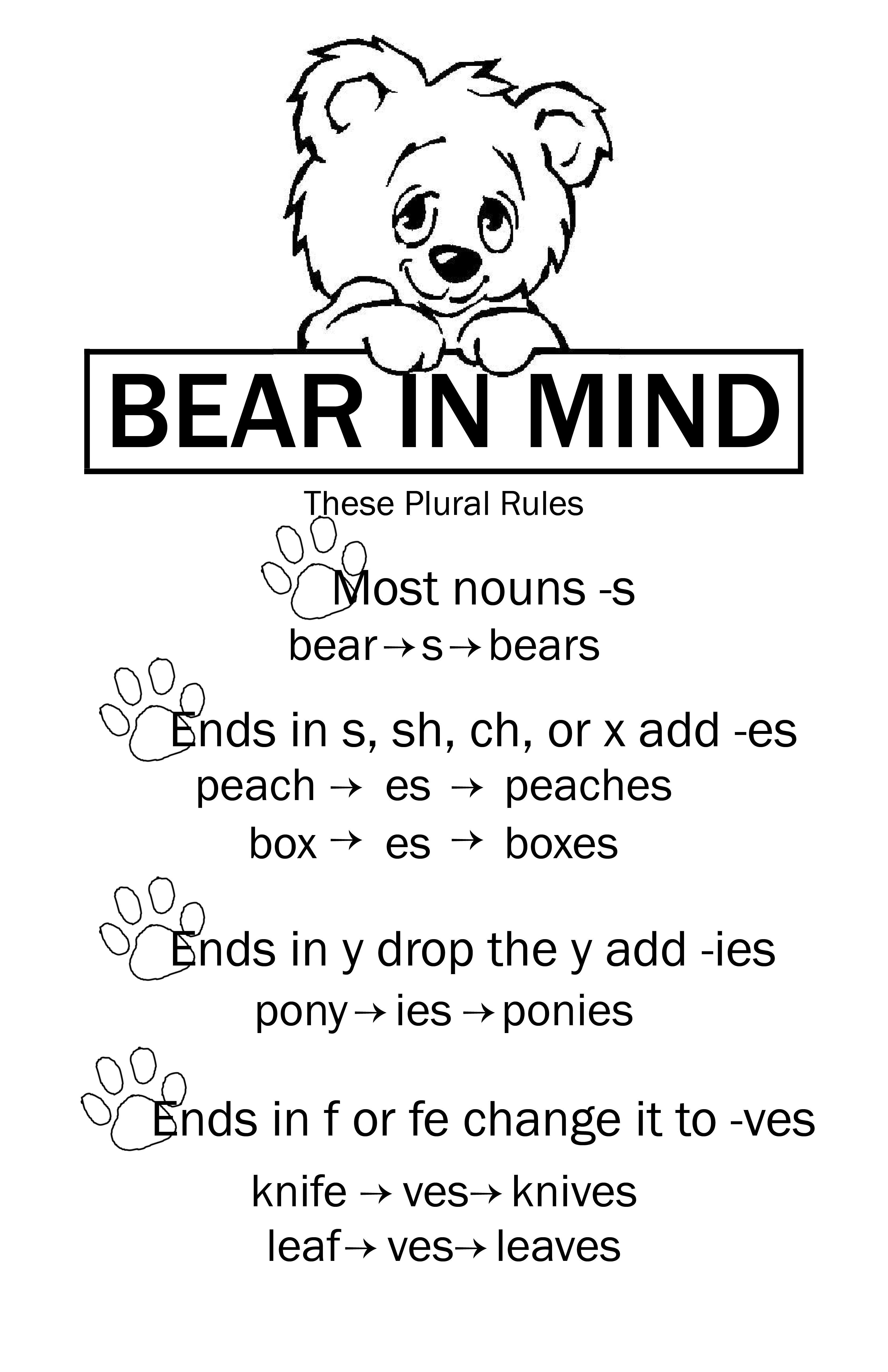 Plural Rules For Nouns Cute Way To Display 11x17 Poster