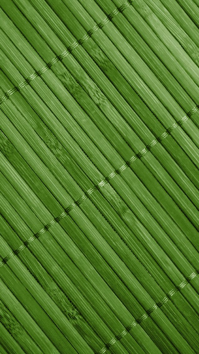 Iphone 5 Wallpaper Tropical Green Bamboo Pattern Wall Paper