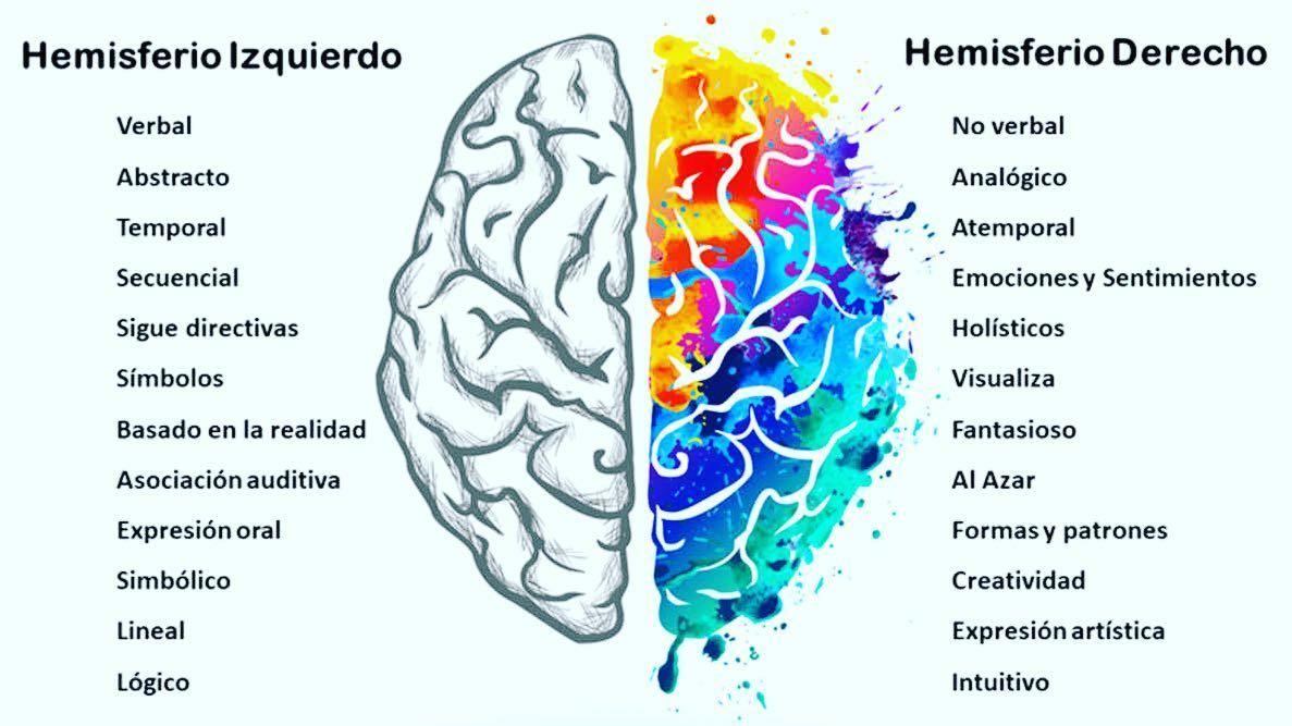 Con Cuál De Los Dos Hemisferios Del Identifica Usted Para Alcanzar Las Metas Y Objetivos Es Importante Conectar Con El Hemisferio Mentor Coach Neuro Medical