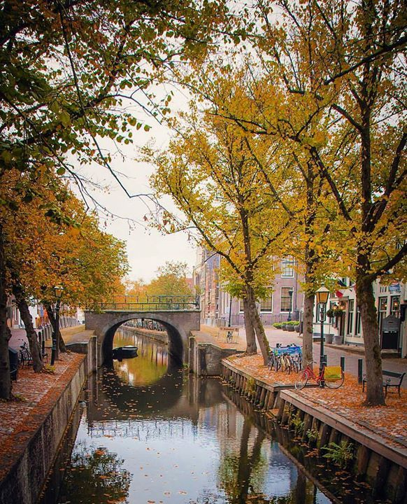 Hotels-live.com/cartes-virtuelles #MGWV #F4F #RT #worldbestshot Autumn in Edam Netherlands. Pic by @jeanpaulbardelot   FOLLOW @worldbestshot AND TAG YOUR BEST SHOTS #worldbestshot #worldbestshot_ig TO BE FEATURED. Don't forget to add photo location ____________________________________ by worldbestshot https://instagram.com/p/9Khv9pNt-j/