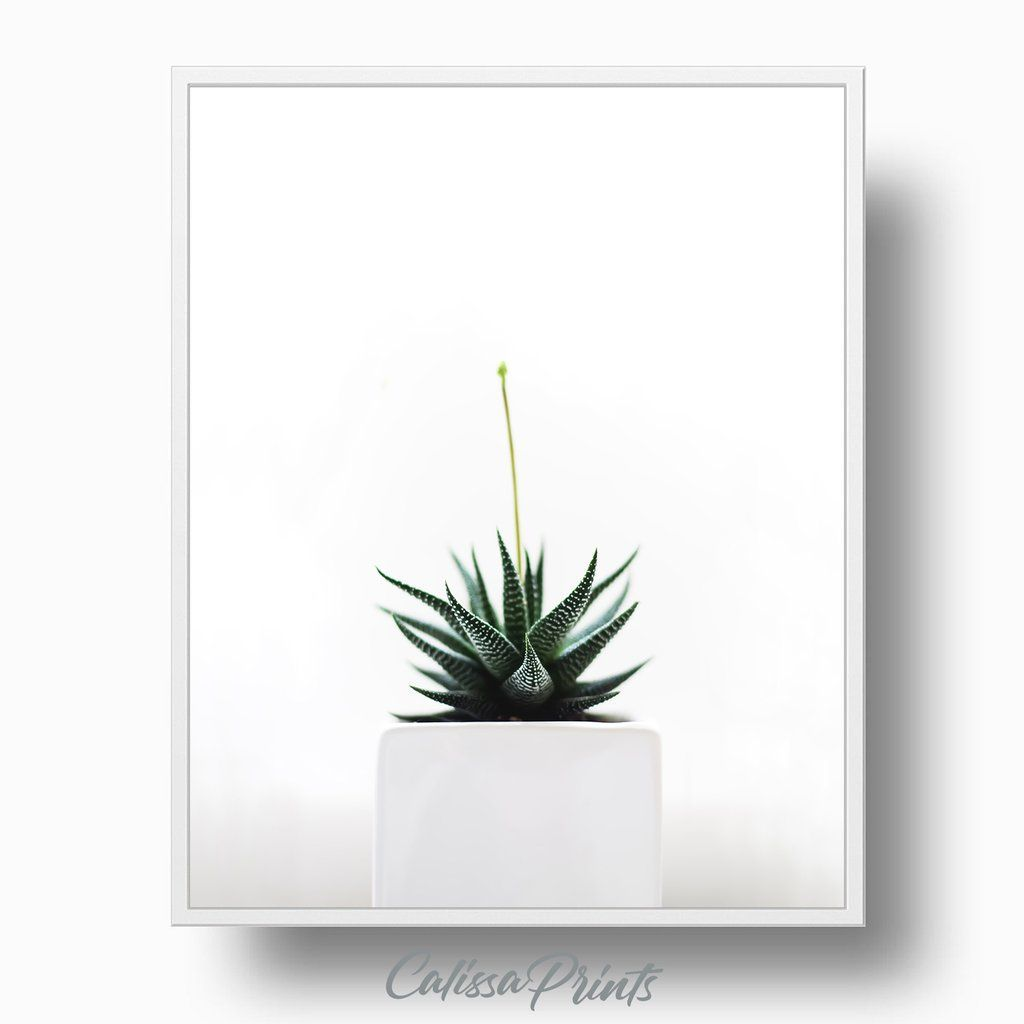 Minimalist Plant in Pot #arizonacactus Minimalist Plant in Pot #arizona-cactus #bathroom-print #Birthday-gift #arizonacactus