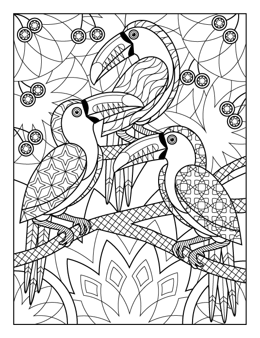Toucans by Joanna Webster | Pajaros 01 | Pinterest | Pájaro y Pintar
