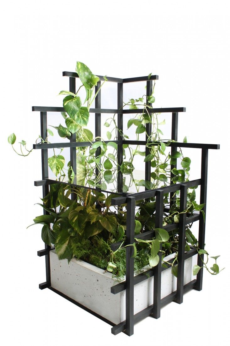 indoor vines trellis tables and shelves from moonish vine