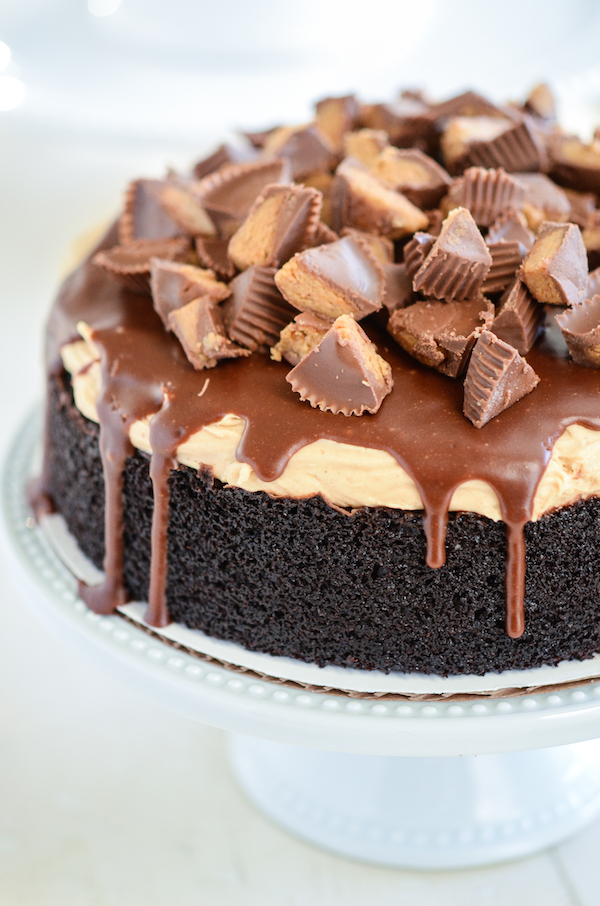 Reese S Dark Chocolate Cake Perfect Decadent One Layer