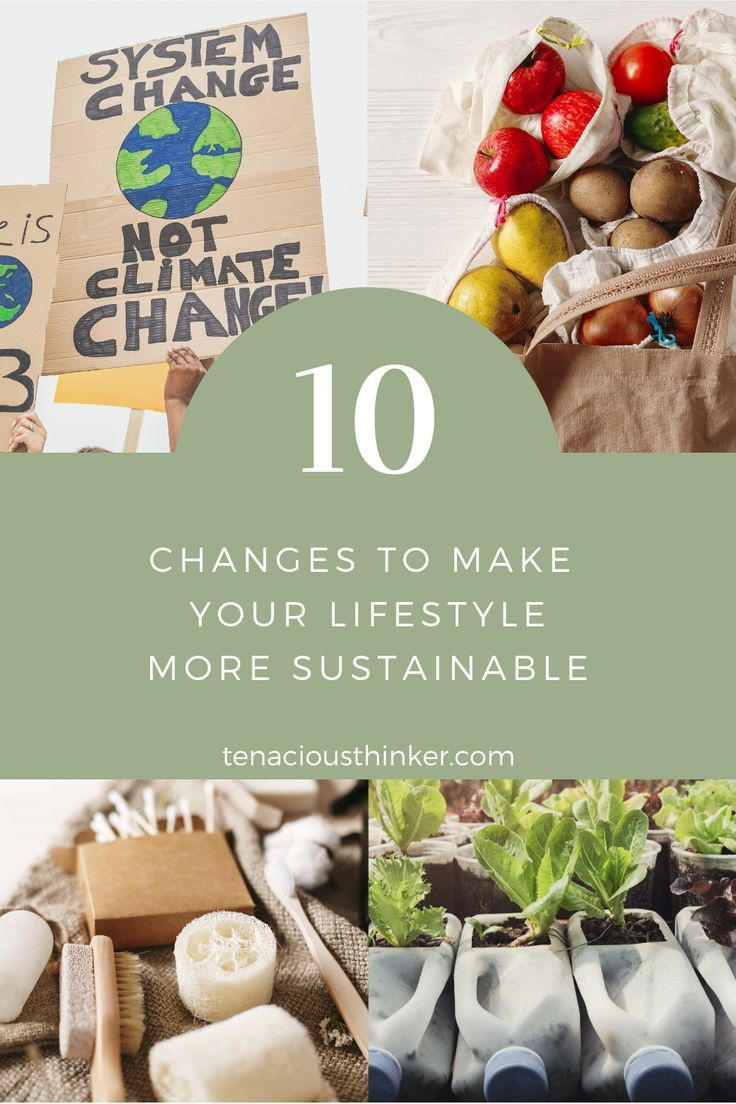 These 10 tips will introduce you to sustainability and show you lots of ways to minimize your impact on the environment. Many people are focusing on living more sustainably and eco-friendly. Did you know you can use minimalism to fast-track your environmentally conscious lifestyle?   #environmentalist #Environmentalism #ecoconscious #EcoLiving #EcoFriendly #ecolife #ecolifestyle #ecoblogger #greenliving #ecominimalism