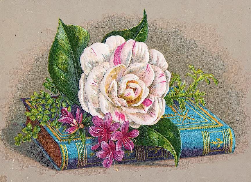 Книги и цветы открытки, день будет прекрасным