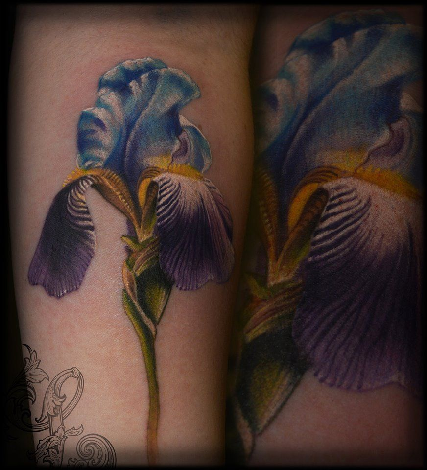 Realistic iris flower tattoo done collectivetatt done by me realistic iris flower tattoo done collectivetatt izmirmasajfo Images