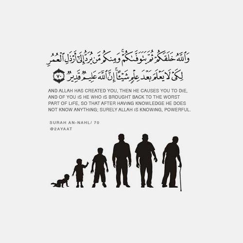 صور دينية ايات من الذكر الحكيم صور ايات قرآنيه وترجمتها روعه Quran Verses Quran Book Islam And Science