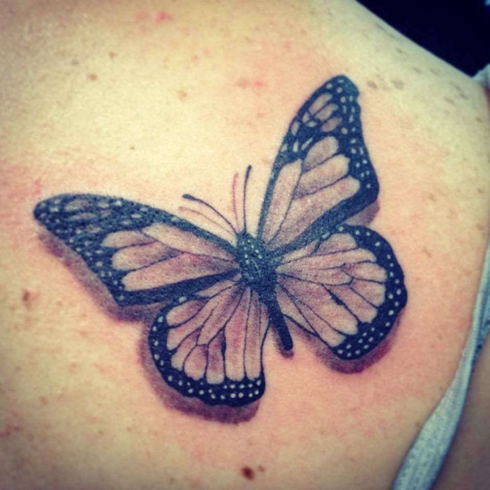 """Small black and grey butterfly, """"we are all that we are"""" underneath/around it"""