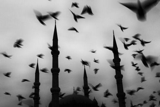 Photographer Eleni Mahera