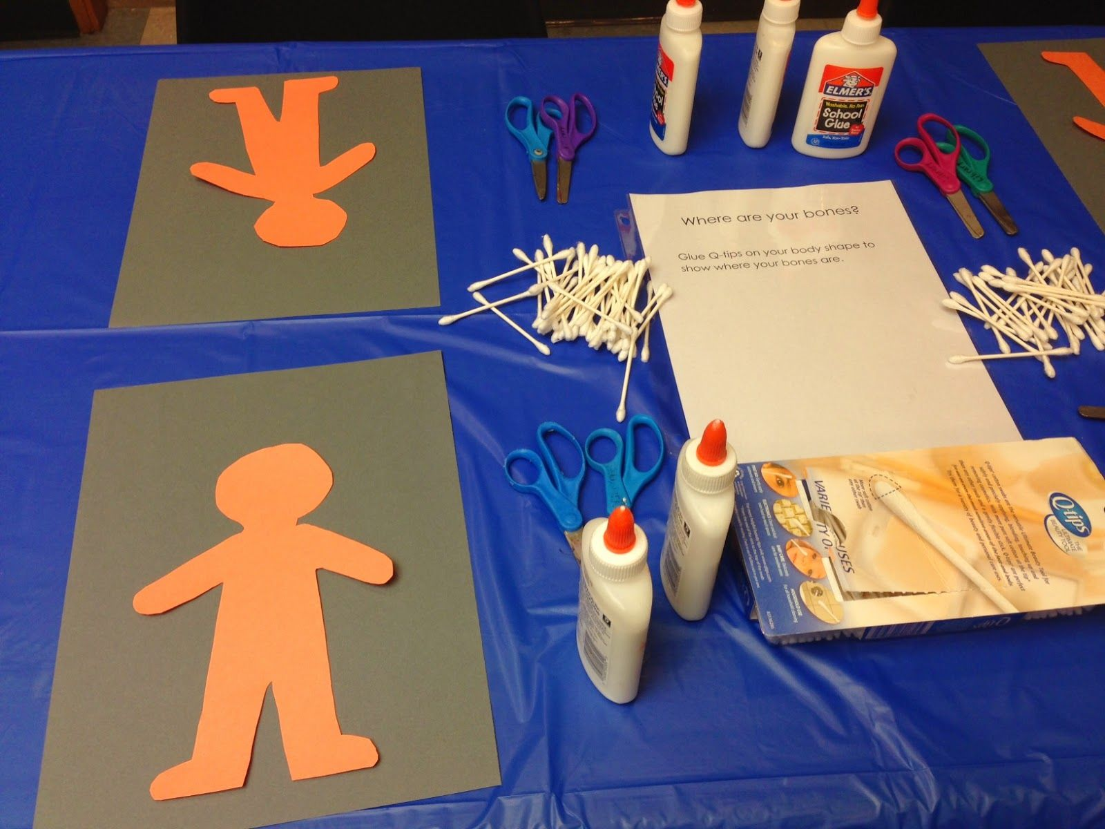 Abby The Librarian Preschool Lab My Body