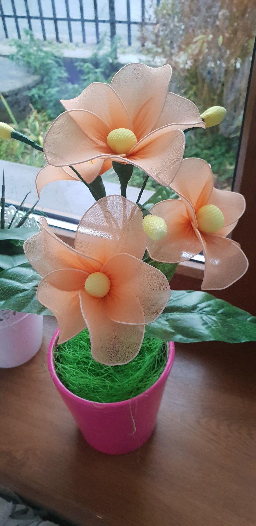 Kwiaty Z Rajstop Planter Pots Planters Plants