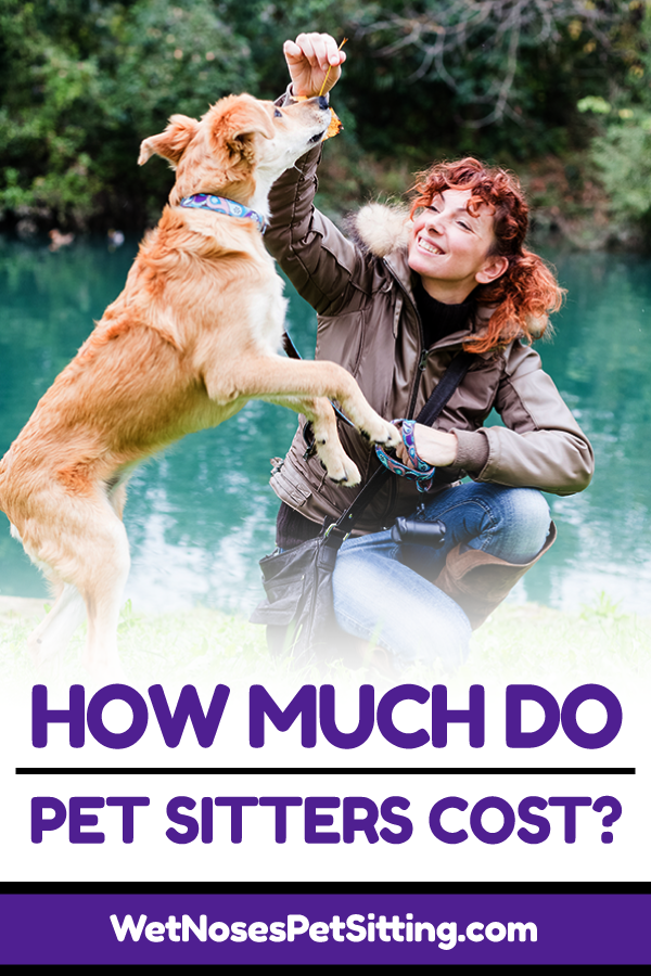 How Much Does a Pet Sitter Cost? - Wet Noses Pet Sitters ...