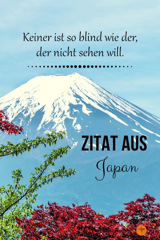 Buddhistische Weisheiten / Zen Buddhismus / Shaolin Sprüche / wahre worte / Buddha wisdom / japanische zitate / selbstbestimmung / inneren frieden finden / selbstreflexion #zenbuddhismus #zitate