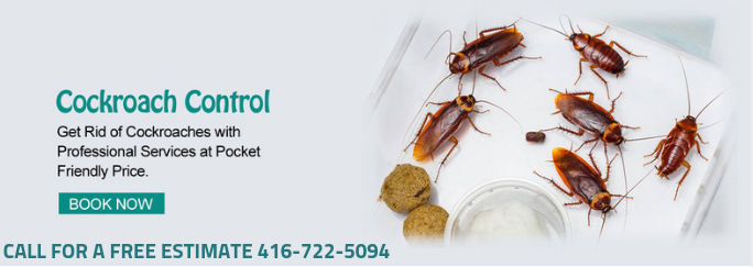 Pestrgone Pest Control company is the leading and