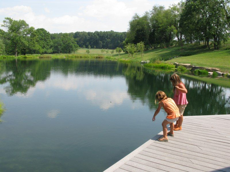 Perfect dock configuration for fish viewing on this for Building a 1 acre pond