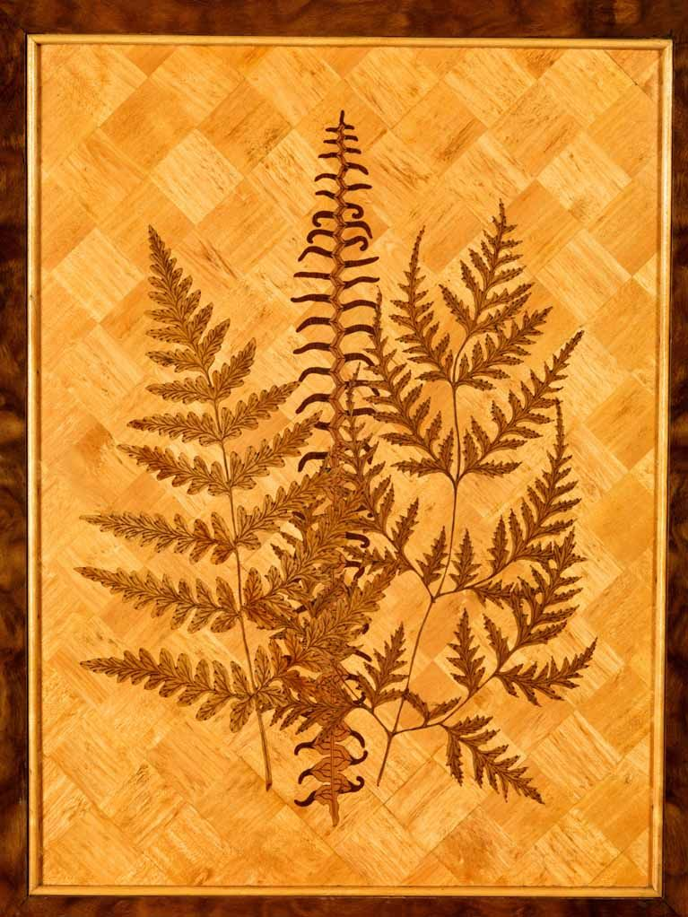 detail of marquetry ferns, inlaid on the interior of the ...