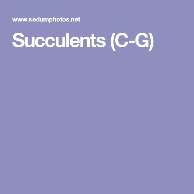 Succulents (C-G)