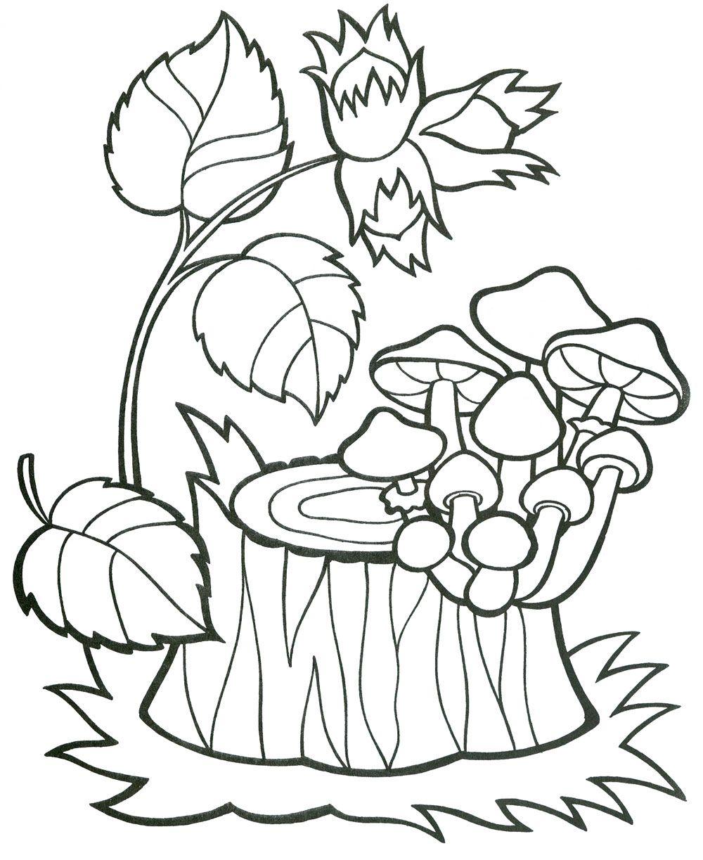 раскраска грибы на пеньке грибы рук гномы