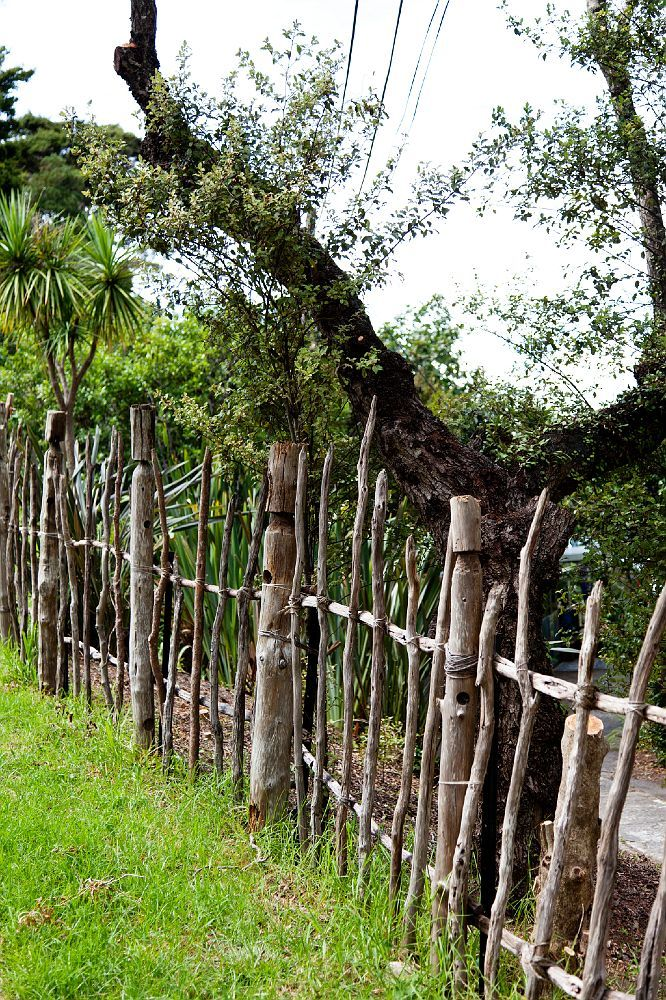 Tracey tawhiao daniel hype the native haimoana dam for Rustic fence ideas