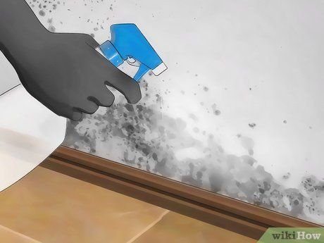 Kill Mold With Vinegar In 2020